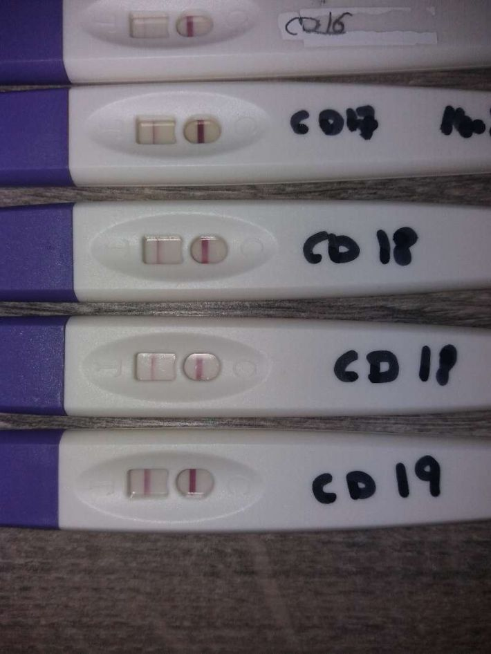 Ovulatietest Positief Of Niet Babybytes